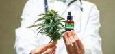 Marihuana vyrobená zobyčejných kvasnic je žhavou novinkou genetického inženýrství