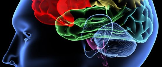 Umělý mozek již za 10 let