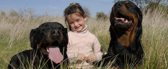 Tříletou holčičku vychovali psi, matka pila