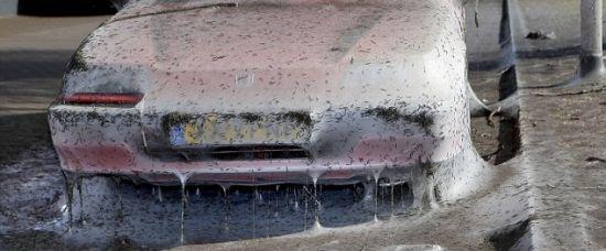 Tisíce housenek pokryly auto hedvábím