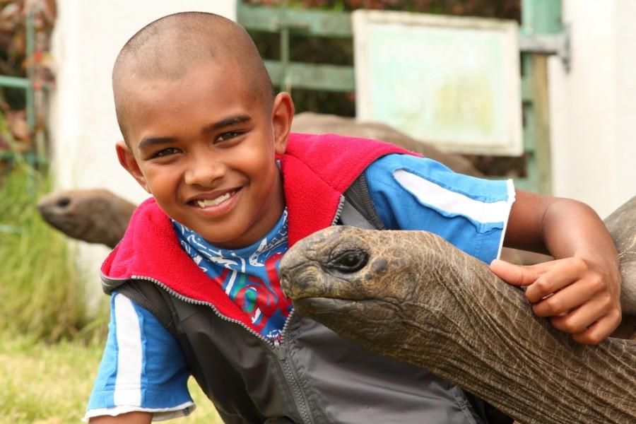 Želva Jonathan - nevypadá věru na svůj věk