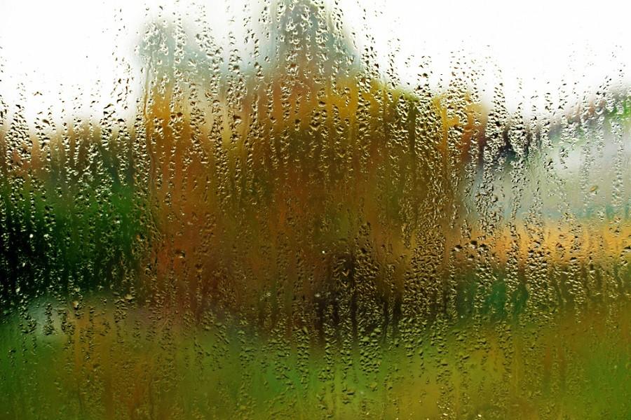 Orosené okno