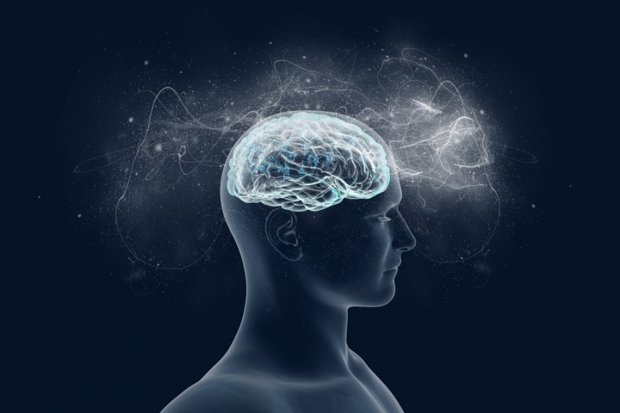 Mozek a jeho schopnosti