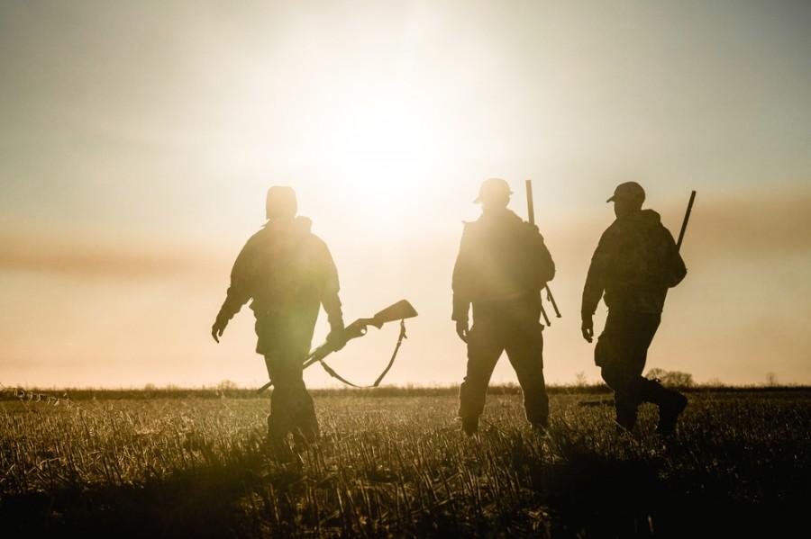 Myslivci na lovu