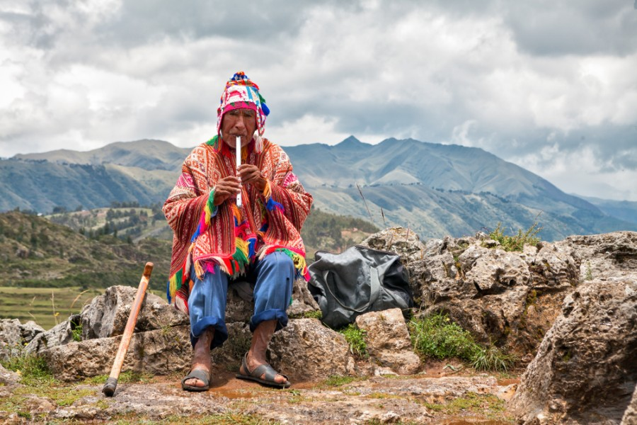 Peruánský pastevec