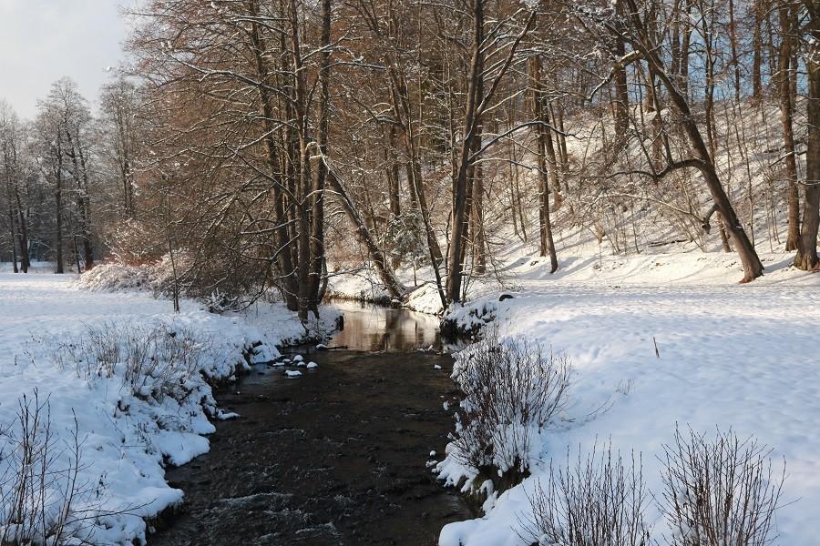 Malebná zimní příroda