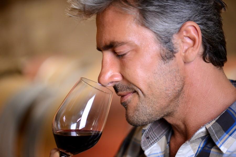 Vůně vína