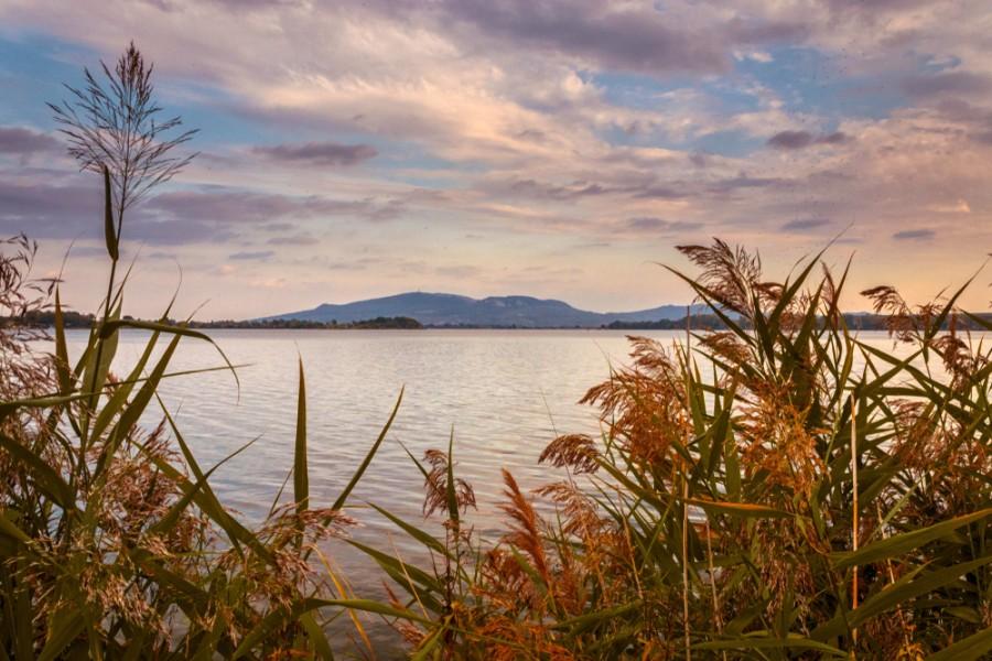 Moravská jezera