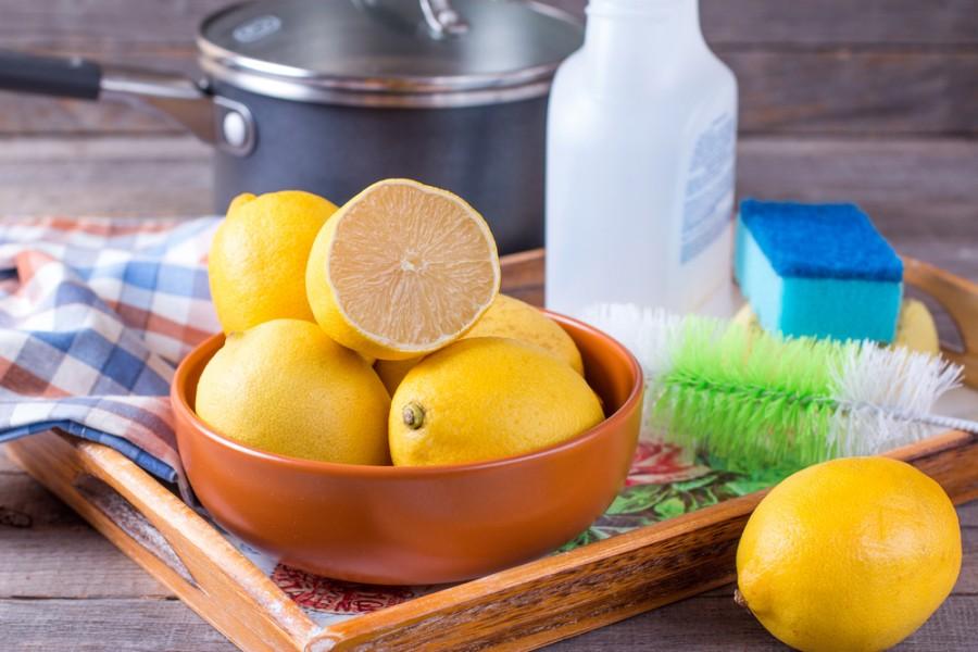 Citron v boji proti mravencům