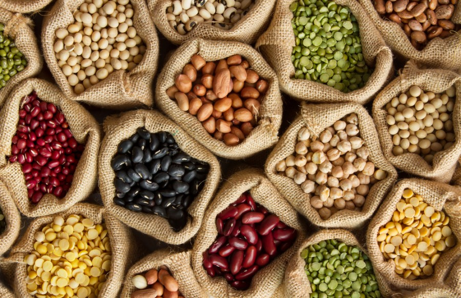 Luštěniny jako zdroj bílkovin