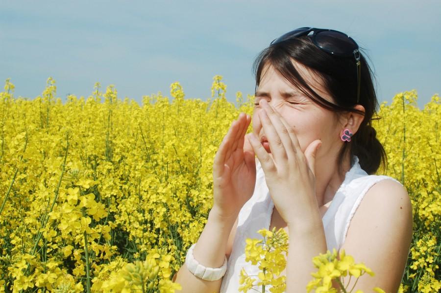 Boj s alergií na pyly