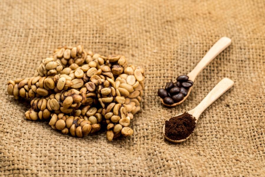 Káva z trusu